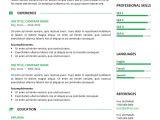 Free Professional Resume Templates Gastown2 Free Professional Resume Template