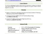 Fresher Resume format Download 10 Fresher Resume Templates Download Pdf
