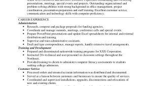 Functional Resume Sample Pdf 9 Functional Resume Samples Pdf Doc Sample Templates