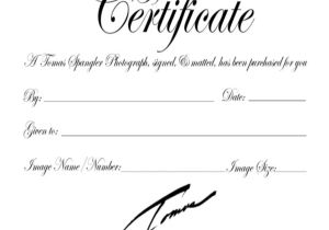 Gift Certificate Template for Photographers Gift Certificate Template 8 Free Word Pdf Document