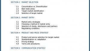 Global Business Plan Template International Business Plan for Companies