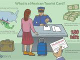 Global Entry Card Mexico Border What is A Mexican tourist Card and How Do I Get One