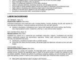 Good Basic Resume Objective Resumes for Excavators Construction Resume Resumes