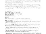 Good Basic Skills to Put On A Resume Example Resume Basic Computer Skills Summary Skill Sample