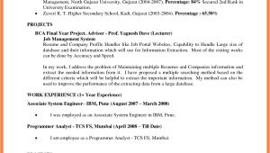 Google Resume Sample Google Doc Resume Template Health Symptoms and Cure Com
