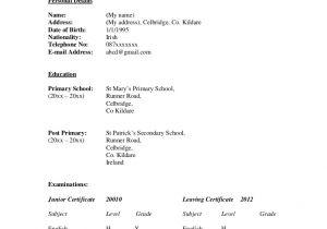 Grade 12 Student Resume Sample Curriculum Vitae