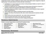 Graphic Designer Resume Word format Graphic Designer Resume Sample Free Resume Template