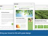 Great Mailchimp Templates Template Newsletter HTML Ho64 Jornalagora