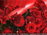 Greeting Card Ke andar Kya Likhe Good Morning Wishes with Beautiful Red Roses Morning Flowers