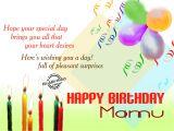 Happy Birthday Mama Ji Card Birthday Wishes Birthday Wishes for Mamu Jan