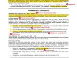 How to Make A Professional Resume 15 Killer Tips On How to Set Professional Goals Examples
