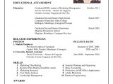 How to Make A Professional Resume Life as I Make It