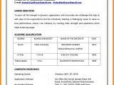How to Make Resume for Job Interview In India 12 Make Cv for Job Cover Letter