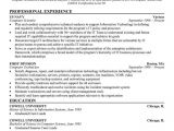 How to Write Basic Computer Skills In Resume 7 Best Basic Resume Examples Images On Pinterest Debt