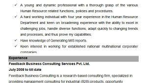 Hr Executive Resume Sample 26 Hr Resume Templates Doc Free Premium Templates