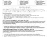 Hr Professional Resume Objective Human Services Resume Objective Samples Resume Objective