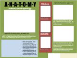 Informative Poster Template Informational Poster Template Design 1 Instructional
