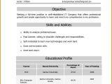Infosys Fresher Resume format Infosys Resume format Resume format Example