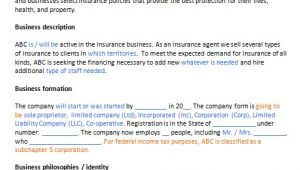 Insurance Business Plan Template Free Insurance Agent Business Plan Template Business Plan
