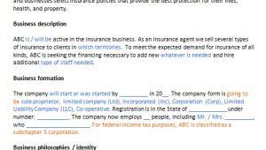 Insurance Business Plan Template Insurance Agent Business Plan Template Business Plan