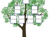 Interactive Family Tree Template Blank Family Tree Chart White Gold