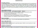 Interest and Hobbies for Resume Samples Personal Interests Examples Bio Letter format