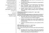 International Relations Student Resume International Relations Resume Example