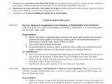 Investor Relations Resume Sample Robert M Mc Connell Resume