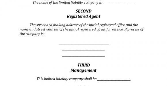 Iowa Llc Certificate Of organization Template Iowa Llc formation Document