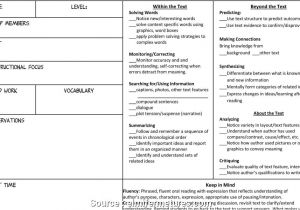 Issp Template Guided Reading Lesson Plan Template 3rd Grade Guided