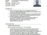 It Basic Resume Sample Basic Resume 21 Documents In Word