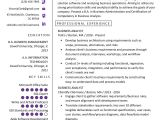 It Business Analyst Resume Sample Business Analyst Resume Example Writing Guide Resume