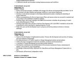 It Business Analyst Resume Sample It Business Analyst Resume Samples Velvet Jobs