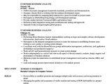 It Business Analyst Resume Sample It Senior Business Analyst Resume Samples Velvet Jobs