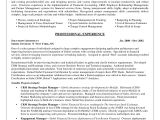 It Business Analyst Resume Samples with Objective Business Analyst Resume Sample Career Diy Pinterest