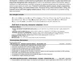 It Business Analyst Resume Samples with Objective Business Systems Analyst Resume Template