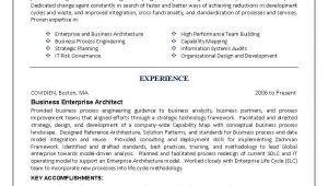 It Engineer Resume Sample It Resume Engineering Sample Resume Business Architect