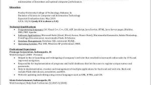 It Professional Resume Pdf It Resume Sample 16 Examples In Word Pdf