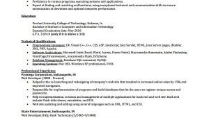 It Professional Resume Samples Sample It Cv Template 7 Free Documents Download In Word