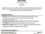 It Professional Resume Templates 24 It Resume Templates Pdf Doc Free Premium Templates
