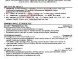 It Professional Resume Templates 40 Simple It Resume Templates Pdf Doc Free Premium