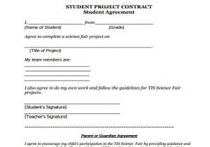 It Project Contract Template 11 Project Contract Templates Word Pdf Google Docs