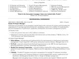It Project Manager Resume Sample It Project Manager Free Resume Samples Blue Sky Resumes