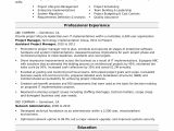 It Project Manager Resume Sample Sample Resume for A Midlevel It Project Manager Monster Com