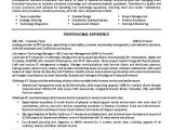 It Team Lead Resume Sample 17 Best Images About Resume Examples On Pinterest Resume