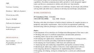 Java Developer Resume Sample Sample Java Developer Resume 7 Examples In Word Pdf