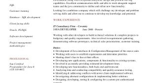 Java Resume Sample Sample Java Developer Resume 7 Examples In Word Pdf