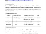 Job Application Resume Template Job Job Resume format New Resume format Job Resume