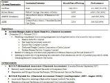 Job Interview Resume format Download Cv format Professional