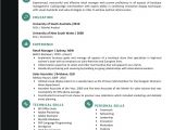 Job Interview Resume format Download Resume format for Job Interview Free Download Mbm Legal
